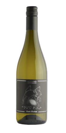 wine-shop_sauvignon_special_animale_celeste