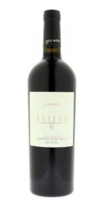 wine-shop_puteus_salice_salentino